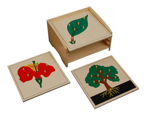 Botany Puzzles Tree, Leaf, Flower (cabinet not included) - Botany Puzzles Tree, Leaf, Flower (cabinet not included)