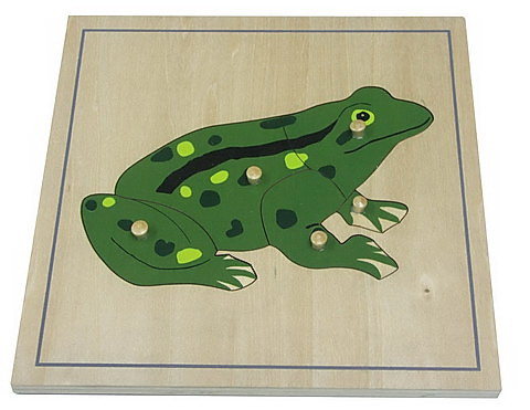 Frog Puzzle - Frog Puzzle