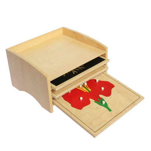 Botany  Cabinet with 3 Puzzles, Tree, Leaf, Flower - Botany  Cabinet with 3 Puzzles, Tree, Leaf, Flower
