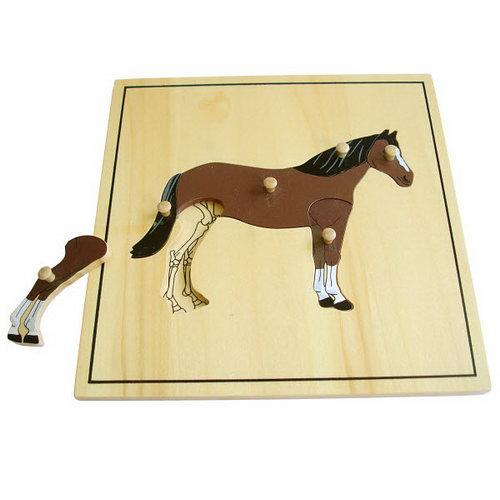 Horse & Skeleton Puzzle - Montessori Wooden Horse & Skeleton Puzzle