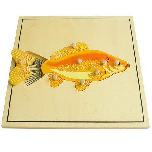 Fish & Skeleton Puzzle - Montessori Wooden Fish & Skeleton Puzzle