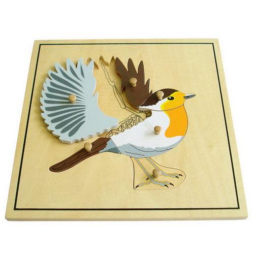 Bird & Skeleton puzzle. - Montessori Wooden bird & Skeleton Puzzle