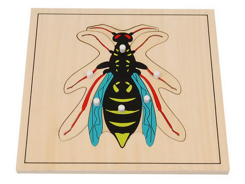 Wasp Puzzle -