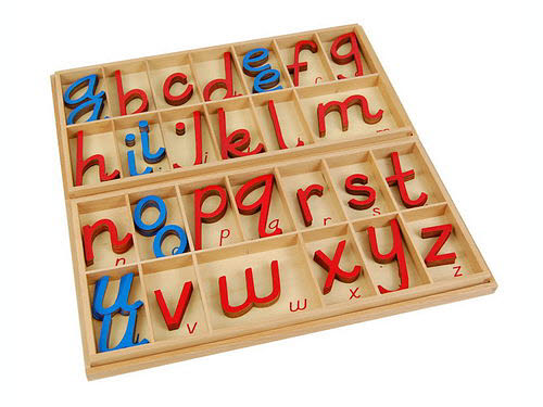 Movable Alphabet Large D'Nealian RcBv in Box - Movable Alphabet Large D'Nealian RcBv in Box