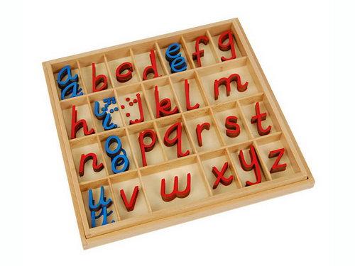 Movable Alphabet Small D'Nealian RcBv (No Box) - Movable Alphabet Small D'Nealian