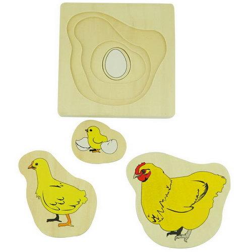 Development 4 Stage Puzzle - Chicken - Development 4 Stage Puzzle - Chicken