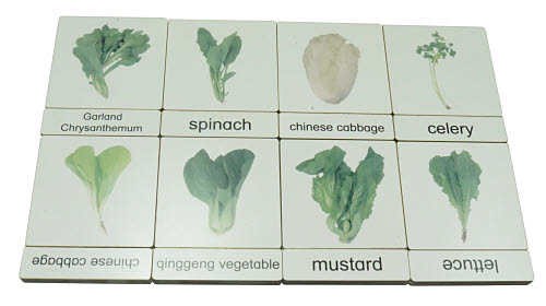 Classification 3 Part Timber Cards - Vegetables No1 -