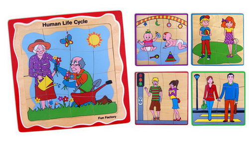 Development 5 Stage Puzzle-Human Life Cycle -