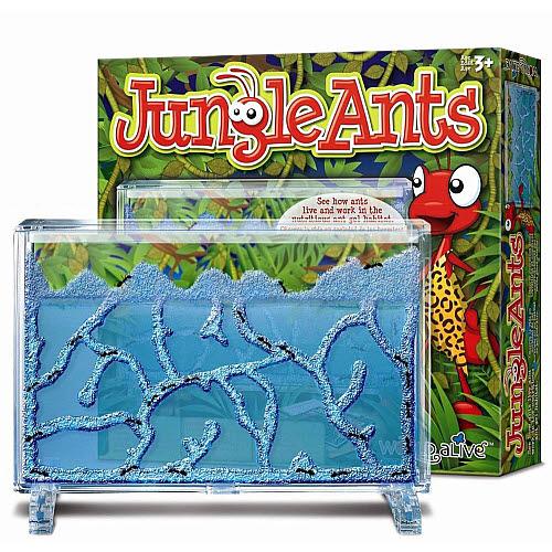Jungle Ants - Jungle Ants