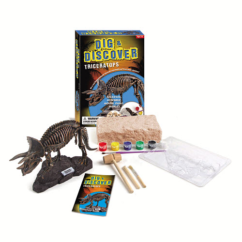 Dig & Discover Triceratops -
