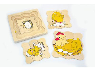 Chicken Life Cycle Puzzle (4 in 1) -