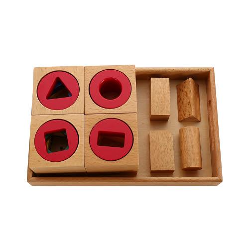 Multiple Shape Blocks on Tray - Multiple Shape Blocks on Tray