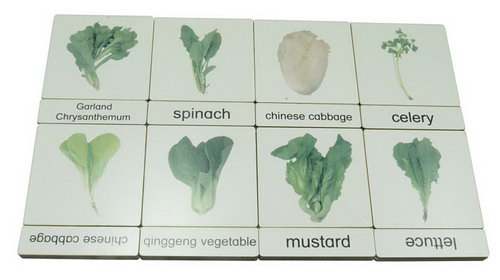 Classification 3 Part Timber Cards - Vegetables No1 - Classification 3 Part Timber Cards - Vegetables No1