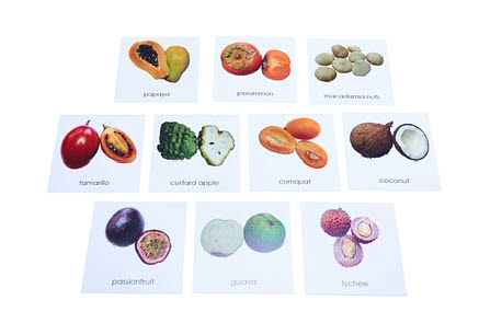 Nomenclature Cards - Tropical Fruit and Nuts - Nomenclature Cards - Tropical Fruit and Nuts