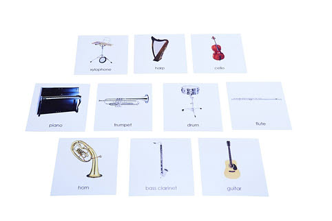 Nomenclature Cards - Instruments - Nomenclature Cards - Instruments