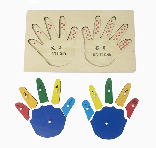 Hand Puzzle with Numbered Fingerss - Hand Puzzle with Numbered Fingerss