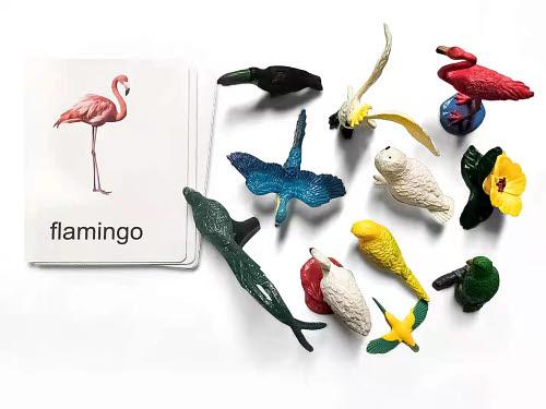Birds Miniatures with Corresponding Cards - Birds Miniatures with Corresponding Cards